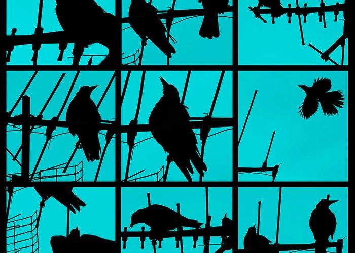 Birds Greeting Card featuring the photograph Asylum by Andrew Paranavitana