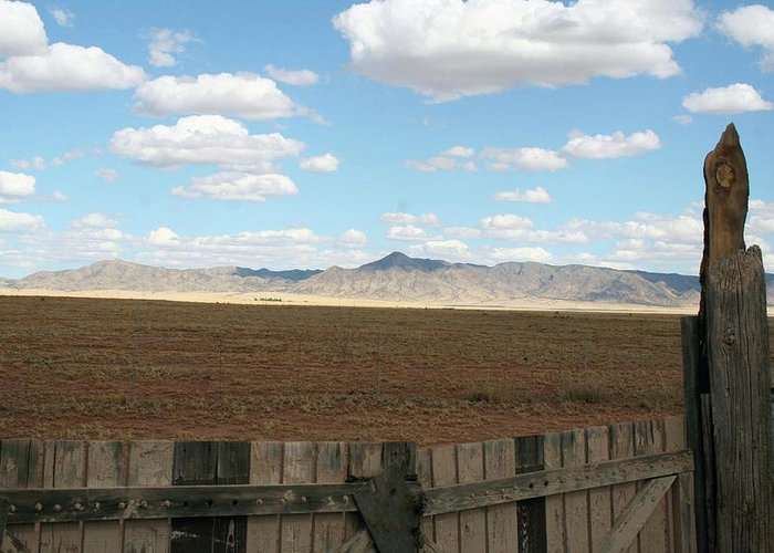 Scholle Nm Greeting Card featuring the photograph At The Gate by Robin DesJardins