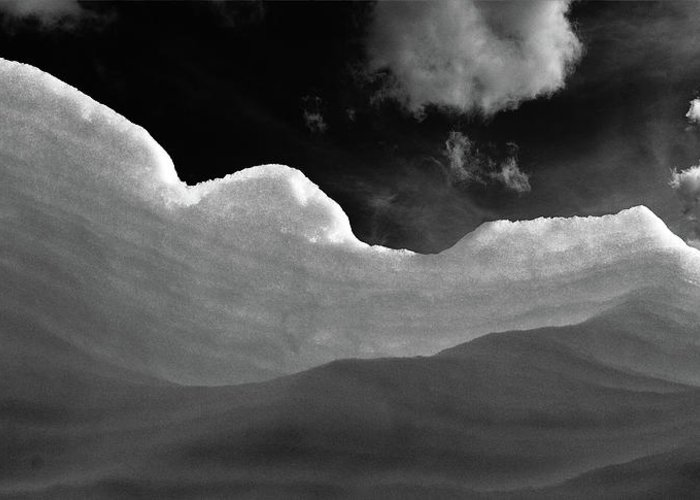 Black And White Greeting Card featuring the photograph At The Slopes by MotionOne Studios