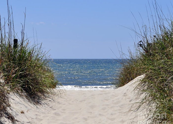 Beach Greeting Card featuring the photograph Atlantic Access by Al Powell Photography USA