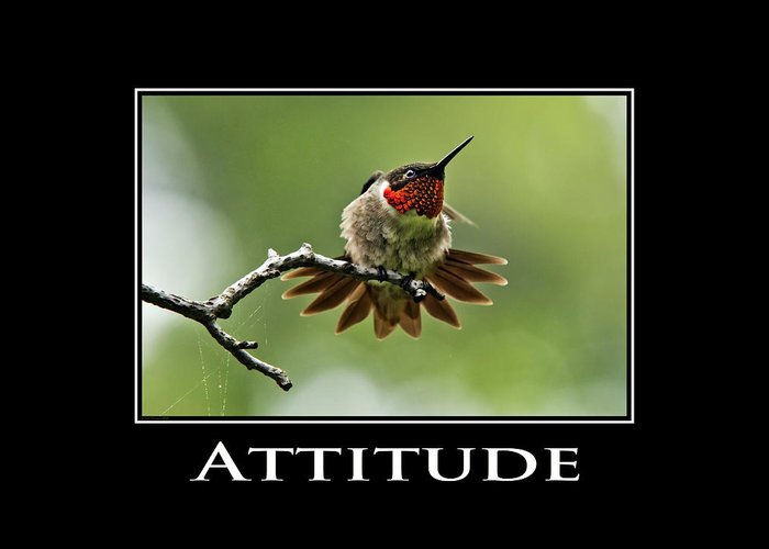 Attitude Greeting Card featuring the photograph Attitude Inspirational Motivational Poster Art by Christina Rollo