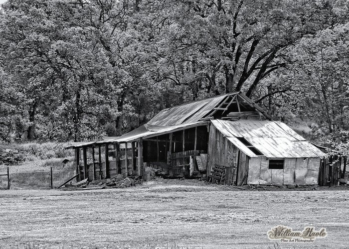 Barn Greeting Card featuring the photograph Auburn Barn by William Havle