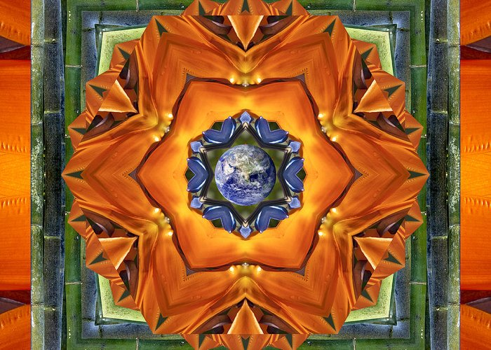 Mandalas Greeting Card featuring the photograph Aura Bamboo by Bell And Todd