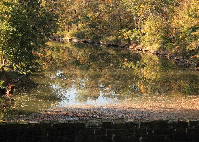 Landscape Greeting Card featuring the photograph Autumn Afternoon by Lone Dakota Photography