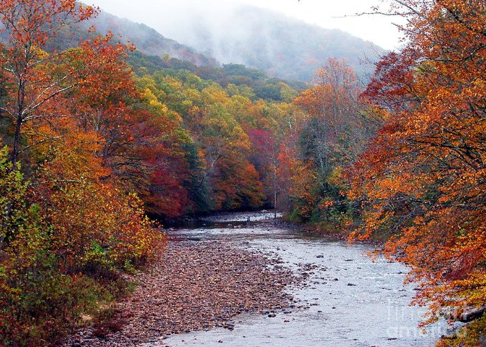 West Virginia Greeting Card featuring the photograph Autumn Along Williams River by Thomas R Fletcher