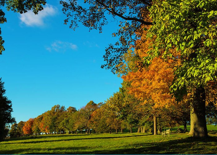 Fall Greeting Card featuring the photograph Autumn At World's End by John Forde