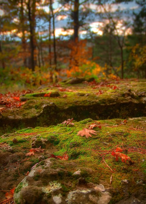Landscape Greeting Card featuring the photograph Autumn Colors by Ryan Heffron