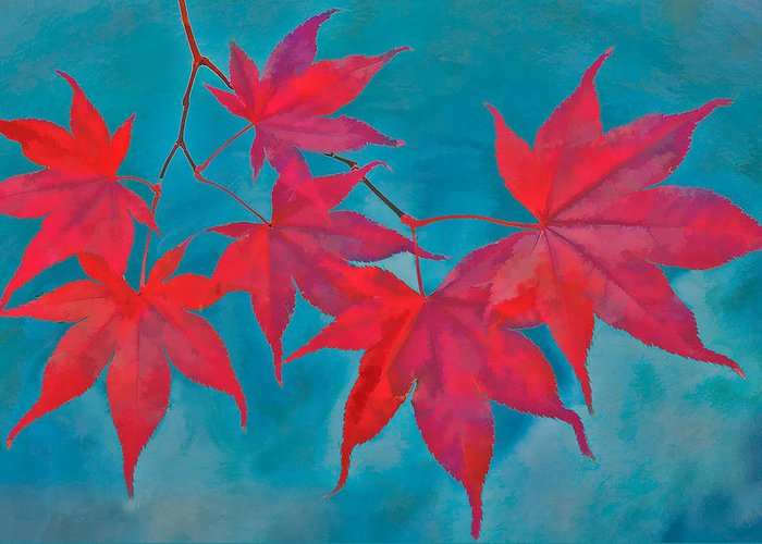 Maple Leaf Greeting Card featuring the photograph Autumn Crimson by William Jobes