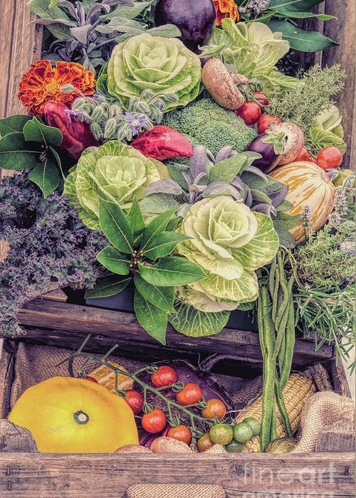 The Kitchen Garden Greeting Card featuring the photograph Autumn Harvest by Tim Gainey