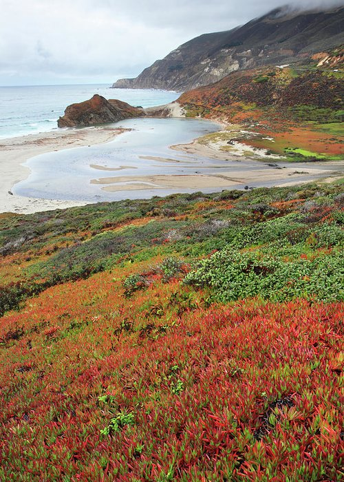 Big Sur Greeting Card featuring the photograph Autumn In Big Sur California by Pierre Leclerc Photography