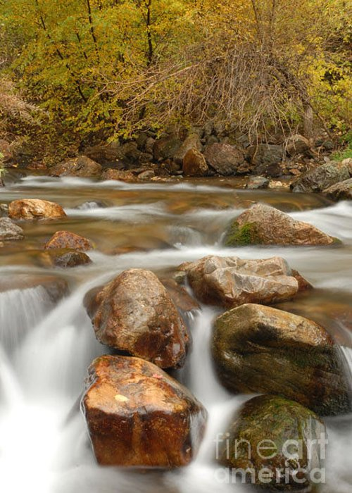 Utah Greeting Card featuring the photograph Autumn In Provo Canyon by Dennis Hammer