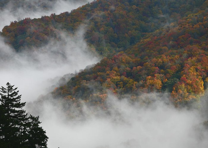Scenery Greeting Card featuring the photograph Autumn In The Mountains by James Jones