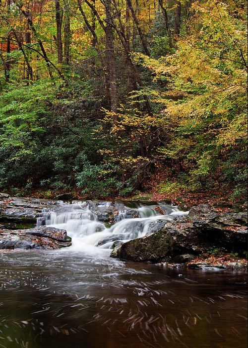 Little River Greeting Card featuring the photograph Autumn In The Smokies by Andrew Soundarajan