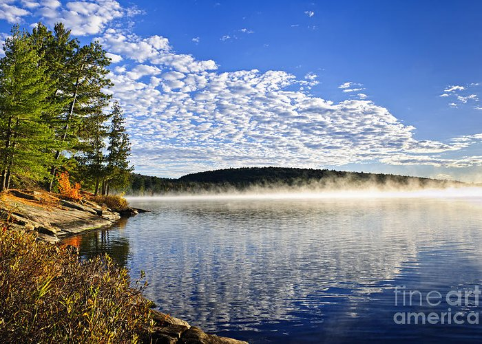 Foggy Greeting Card featuring the photograph Autumn Lake Shore With Fog by Elena Elisseeva