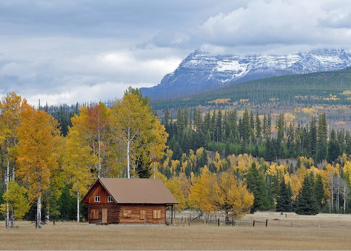 Glacier Greeting Card featuring the photograph Autumn Mountain Cabin In Glacier Park by Bruce Gourley