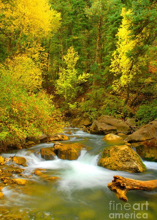 Utah Greeting Card featuring the photograph Autumn On Big Cottonwood River by Dennis Hammer