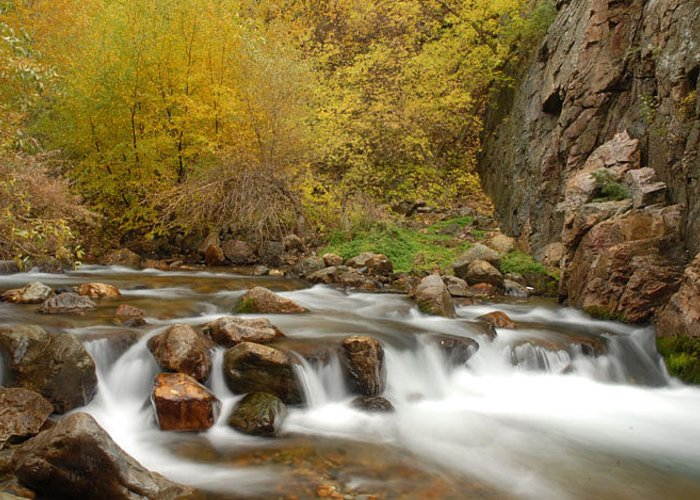 Provo River Greeting Card featuring the photograph Autumn on the Provo River by Dennis Hammer