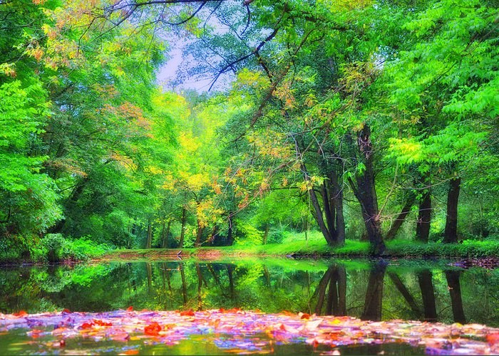Gladwyne Greeting Card featuring the photograph Autumn Pond In Gladwyne by Bill Cannon