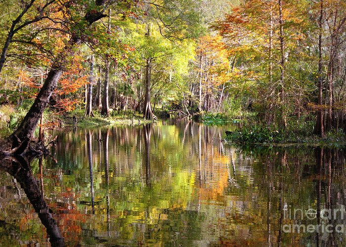 Autumn In Florida Greeting Card featuring the photograph Autumn Reflection On Florida River by Carol Groenen