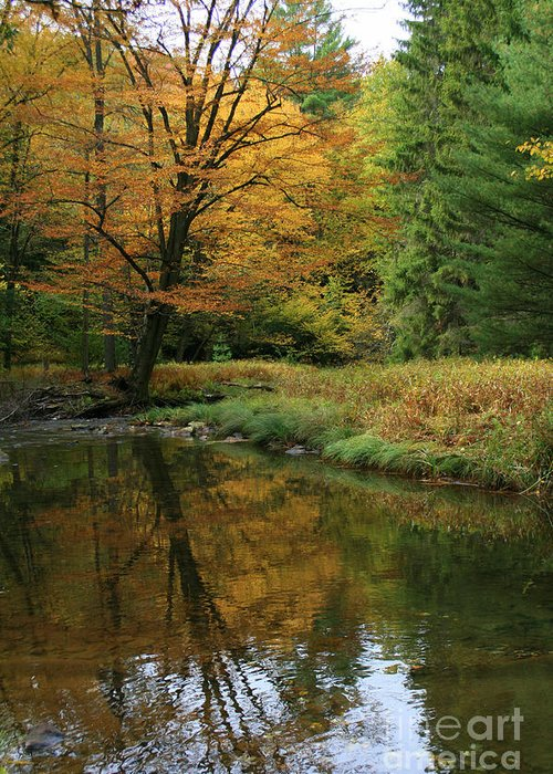 Autumn Greeting Card featuring the photograph Autumn Reflections by Debra Straub