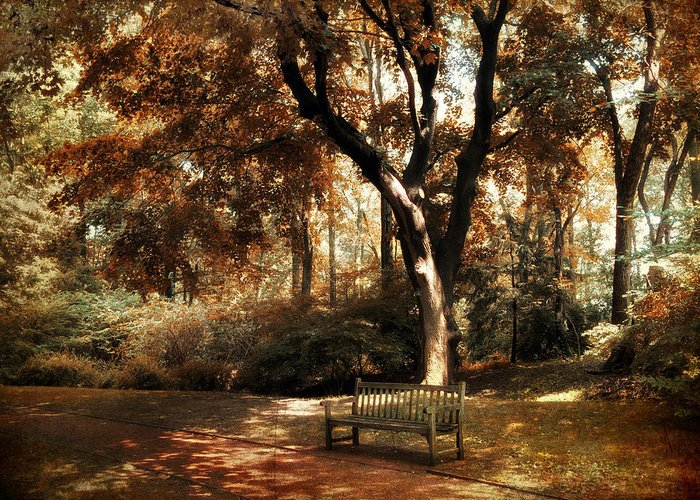 Autumn Greeting Card featuring the photograph Autumn Repose by Jessica Jenney