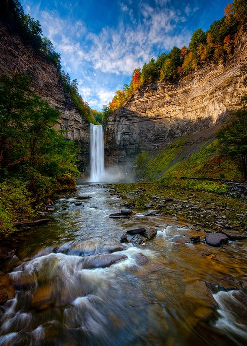 Taughannock State Park Greeting Card featuring the photograph Autumn Riches by Neil Shapiro
