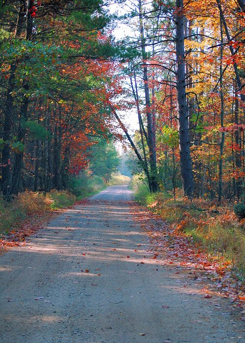 Autumn Greeting Card featuring the photograph Autumn Road by Jennifer Englehardt