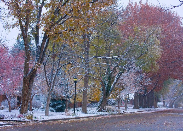 Country Greeting Card featuring the photograph Autumn Snow by James BO Insogna
