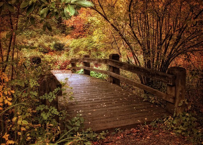 Bridge Greeting Card featuring the photograph Autumn Splendor Bridge by Jessica Jenney