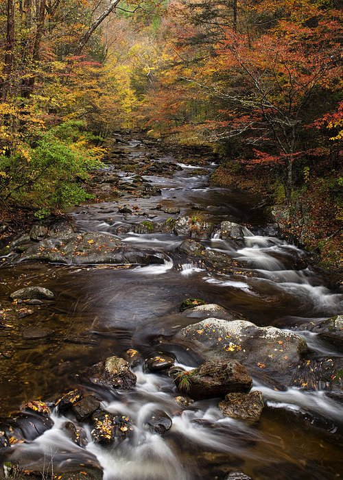 Smoky Greeting Card featuring the photograph Autumn Stream by Andrew Soundarajan
