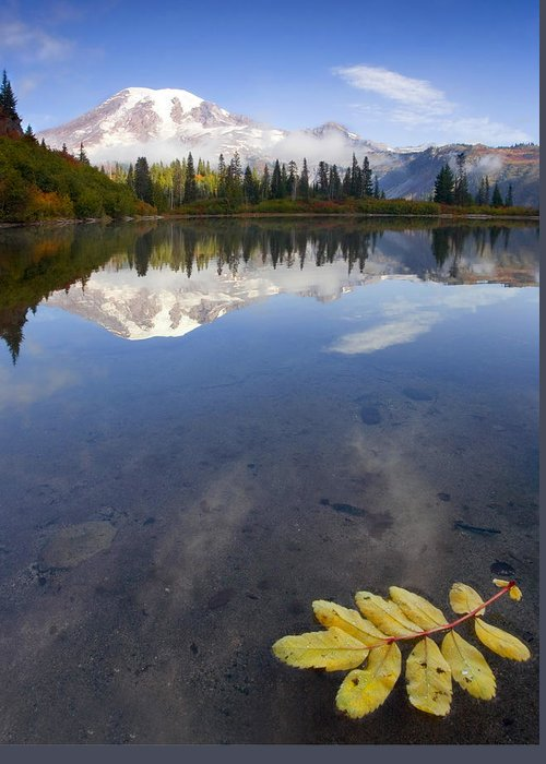 Rainier Greeting Card featuring the photograph Autumn Suspended by Mike Dawson