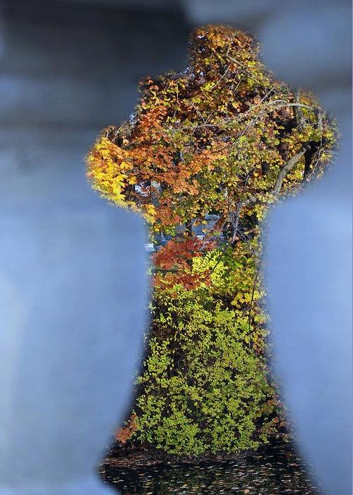 Nature Greeting Card featuring the photograph Autumn Through A Bridge by Lisa Gabrius