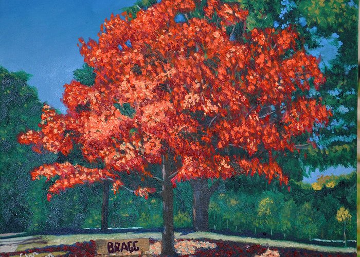 Autumn Fall Trees Greeting Card featuring the painting Autumn Tree by Stan Hamilton