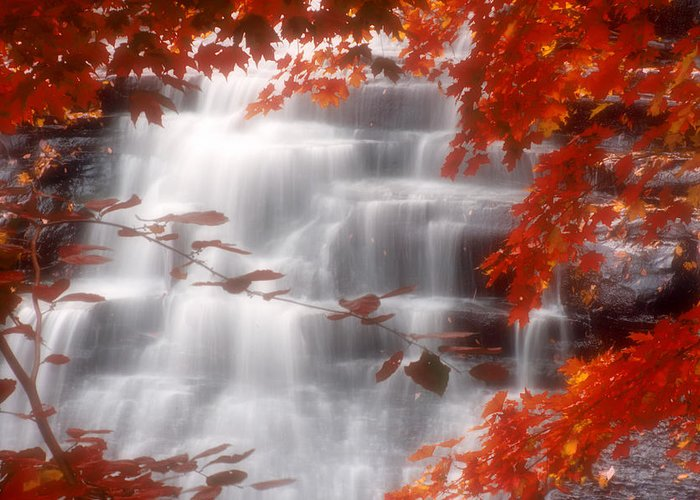Autumn Greeting Card featuring the photograph Autumn Waterfall I by Kenneth Krolikowski