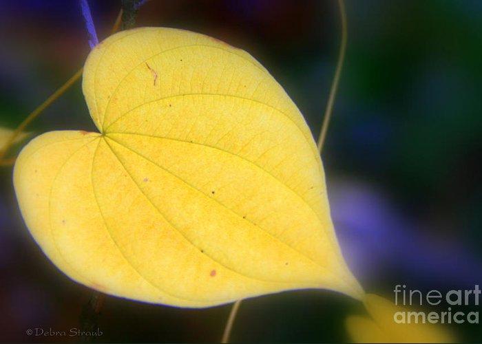 Autumn Greeting Card featuring the photograph Autumn Whisper by Debra Straub