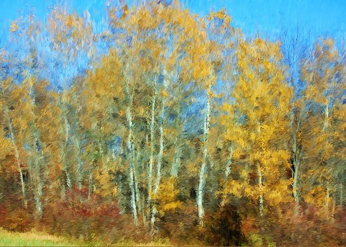 Greeting Card featuring the photograph Autumn Woodlot by David Lane