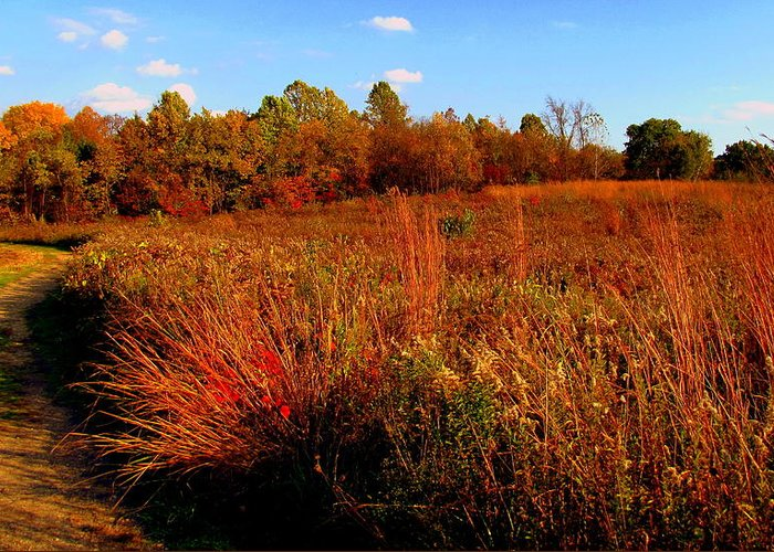 Autumn Greeting Card featuring the painting Autumns Field by Scott Heaton
