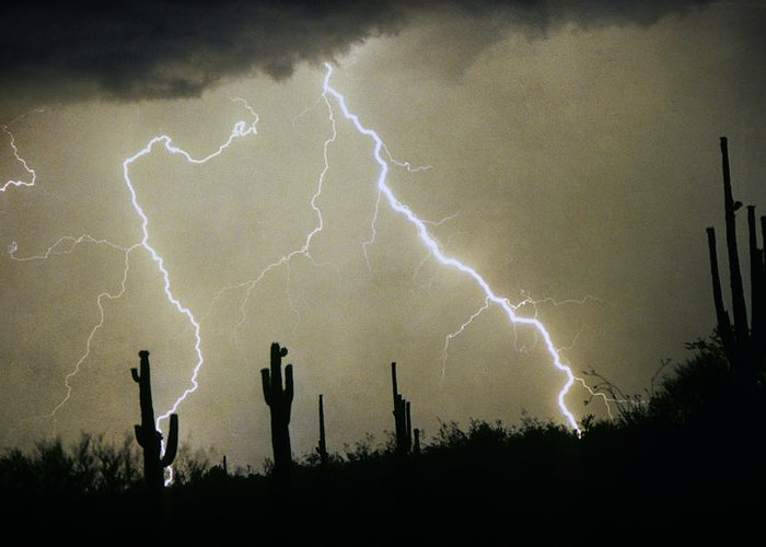Lightning; Lightening; Chasers; Lightning Poster; Lightning Photography; Lightning Gallery; Picture Of Lightning; Lightning Storm Pictures; Lightning Photos Colorado; Pictures Of Storm Clouds And Lightning; Lightning Art; Lightn Greeting Card featuring the photograph Az Desert Storm by James BO Insogna
