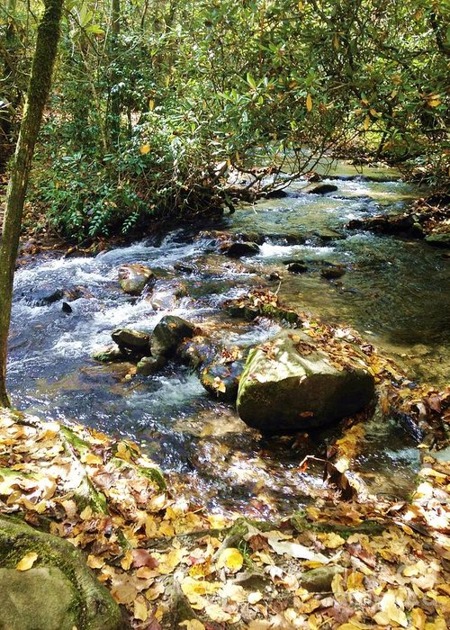 River Greeting Card featuring the photograph Babbling Brook by Donna Cain