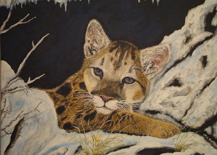 Baby Cougar Animal Nature Wildlife Snow Greeting Card featuring the painting Baby Cougar In Snow by Nick Gustafson