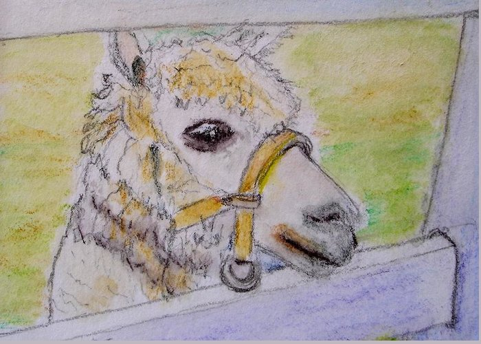 Baby Greeting Card featuring the drawing Baby Llama by Lessandra Grimley