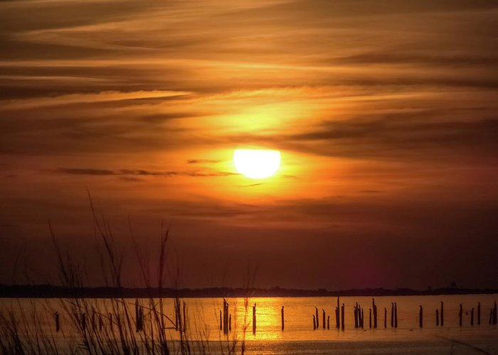 Beach Greeting Card featuring the photograph Back Bay Sunset by MotionOne Studios