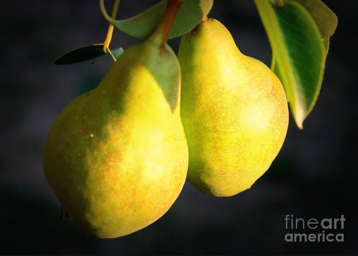 Food Greeting Card featuring the photograph Backyard Garden Series - Two Pears by Carol Groenen