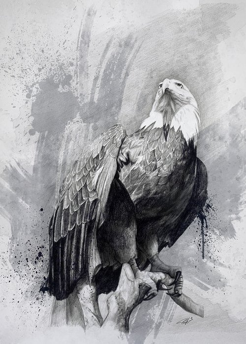 Eagle Drawing Greeting Cards