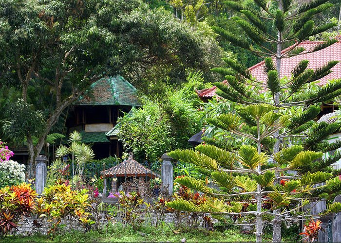 Greeting Card featuring the photograph Bali Gardens by Todd Hummel