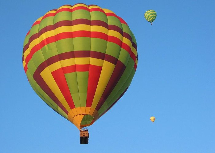 Hot Air Balloons Greeting Card featuring the photograph Balloons New Mexico by Margaret Fortunato