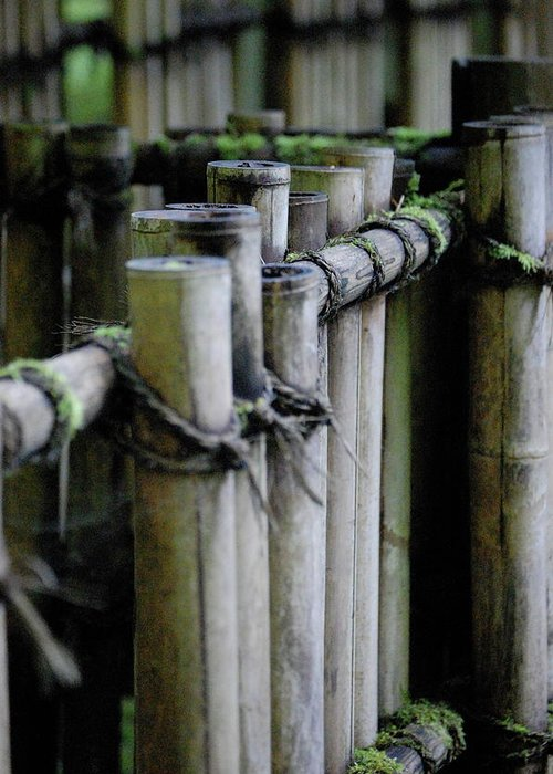 Bamboo Greeting Card featuring the photograph Bamboo Fence by Samantha Kimble