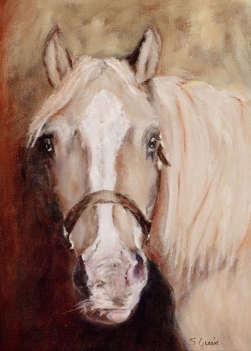 Horse Greeting Card featuring the painting Banjo by Shirley Quaid