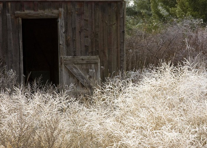 Barn Greeting Card featuring the photograph Barn Door by Idaho Scenic Images Linda Lantzy