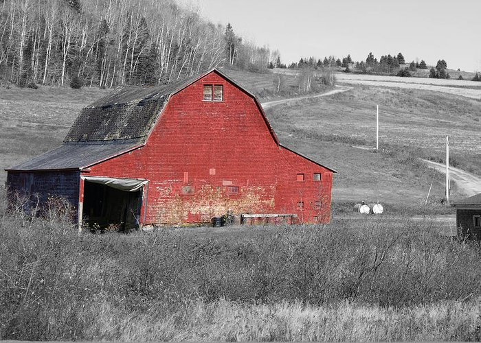 Abandoned Greeting Card featuring the photograph Barn In An Old Setting by Lisa Hebert